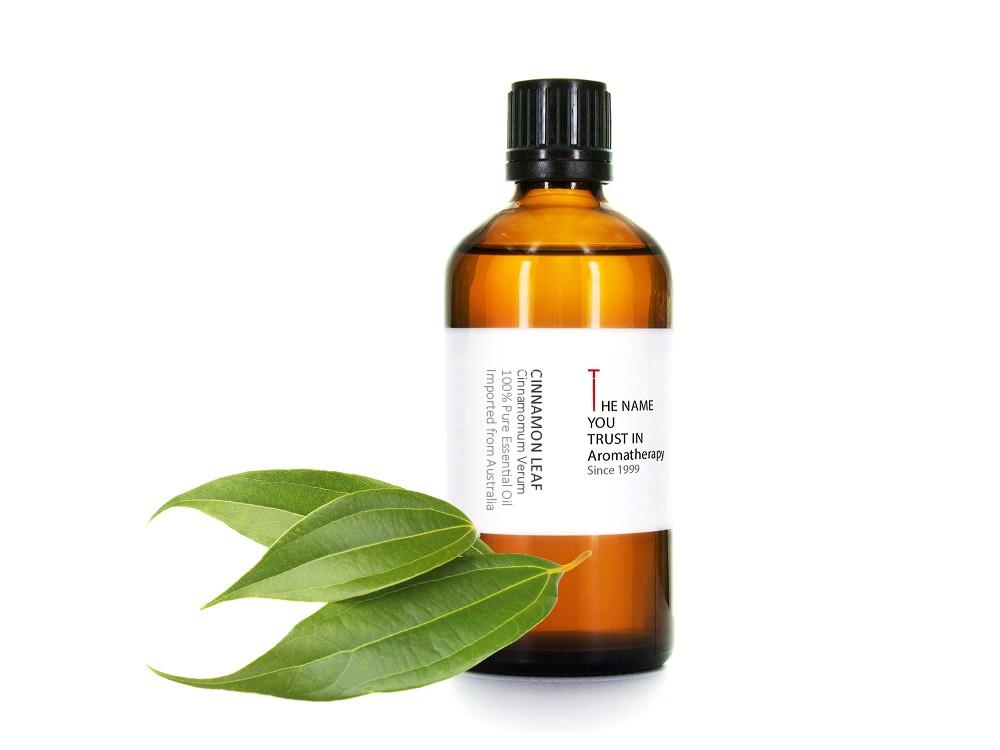 Cinnamon Leaf Essential Oil 肉桂葉精油
