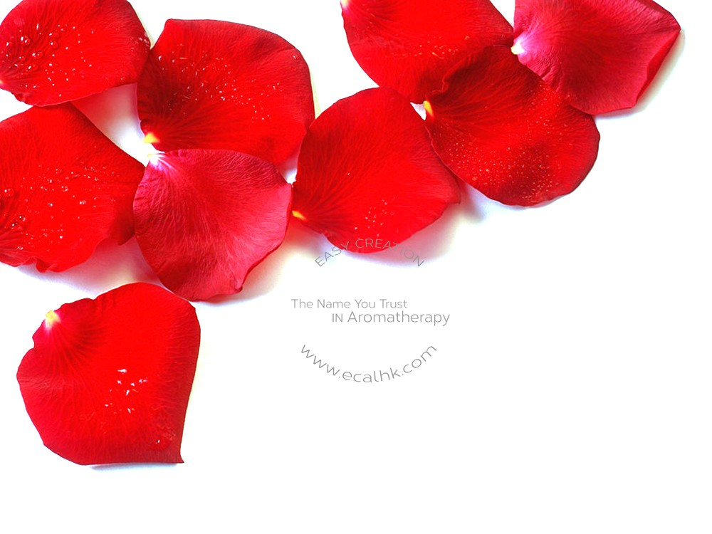 Rose Centifolia Organic Hydrosol 薔薇玫瑰純露 (有機)